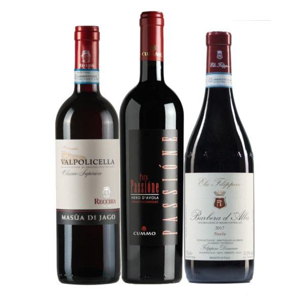 Italian Red Classics: Nero D'Avola, Barbera, Valpolicella Mixed Case